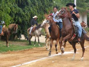Horse races in Flor's hometown.
