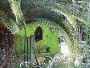Lime green house in Oaxaca