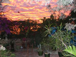 Like the sunrise over our garden in Oaxaca, each day brings hope.