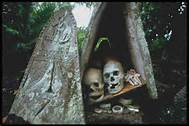 Solomon Island skulls - If you were greeted on a beach with these skulls, you might quickly go back out to sea to avoid those who had killed these people.