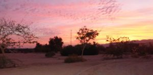 Sunrise at Kibbutz Lotan- from the Eco Kef xx