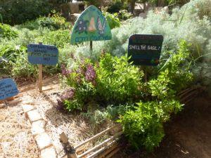 A herb garden