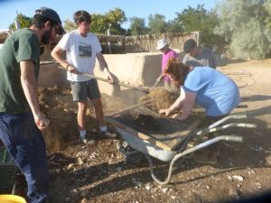 Yes, the Hugel needed good soil, so here is Barry and other volunteers shoveling dried cow manure.