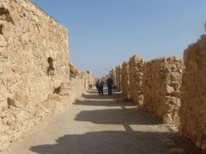 Danny and Barry wandering around Masada.