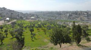 Mount of Olives.