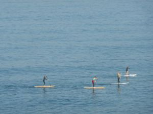 Paddle boarders in Haffa.
