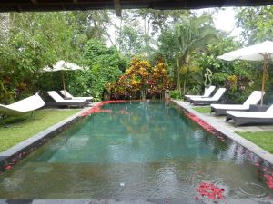 Naya Retreat & Spa - lovely