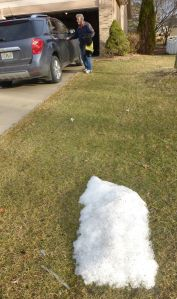 The last of the snow in my sister's yard.
