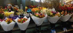 Spring flowers in the market