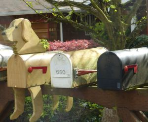 On Gail's street in Kirkland -whimsy