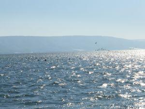 Sea of Galilee - Israel