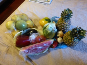 For $3.00 U.S. we bought - two pineapples, onions, peppers, oranges, eggplant, chilies, and a slice of watermelon!