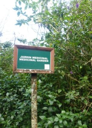 Medicinal Garden