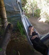 Enjoying a banana from the comfort of a hammock - at the Monteverde Ecological Sanctuary