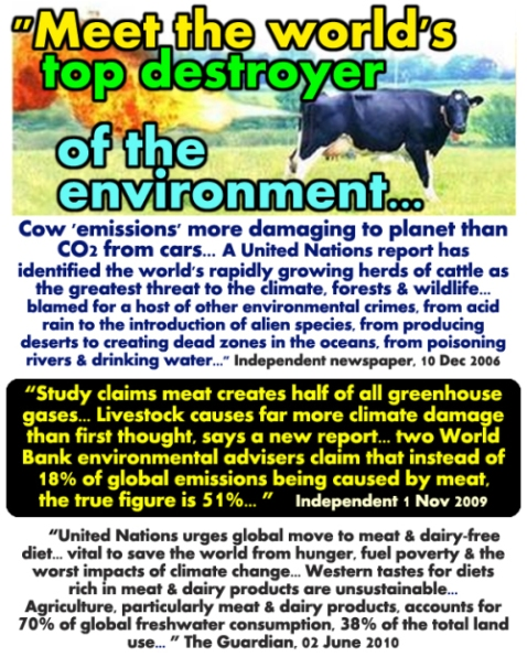 vegetarian-issues-meat-cows-are-main-cause-of-pollution-climate-change