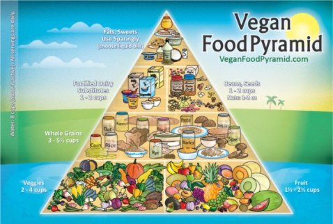 xvegan-food-pyramid-3-jpg-pagespeed-ic-os_lzqytyw
