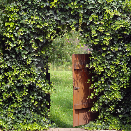 32875733-open-garden-gate-with-ivy-archway